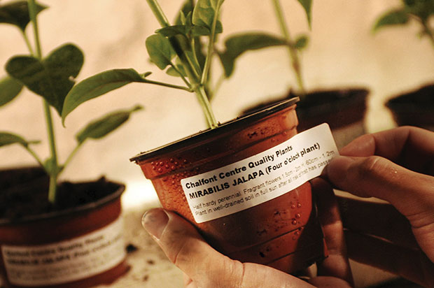 horticultural-labels-a
