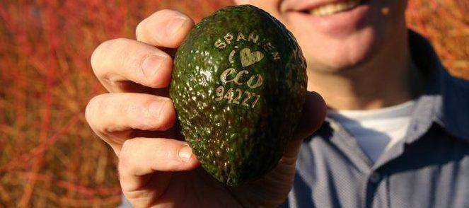 Laser printed fruit