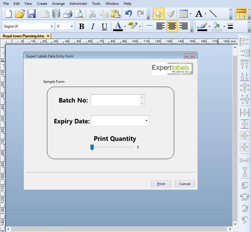 BarTender Data Entry Form